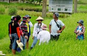 crop-health-training