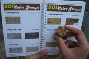 Soil Series - PhilRice