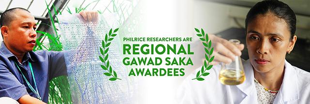 Gawad Saka