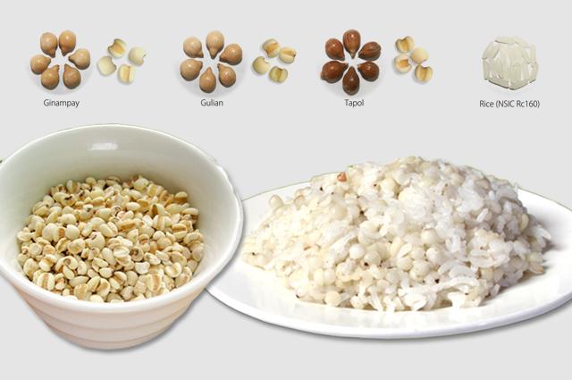 Rice-adlai