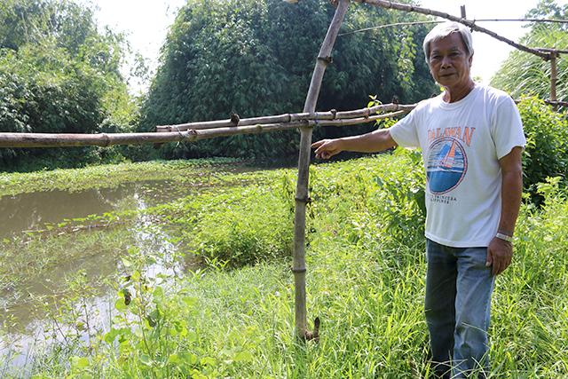 Saving rainwater