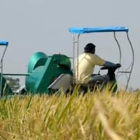 rice PhilRice Machine Rice Mini-combine Harvester