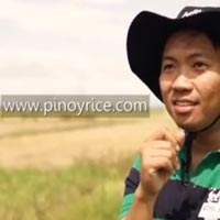 rice Pinoy Rice Web Promotion