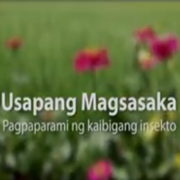 rice Usapang Magsasaka 2016 Ecological Engineering1