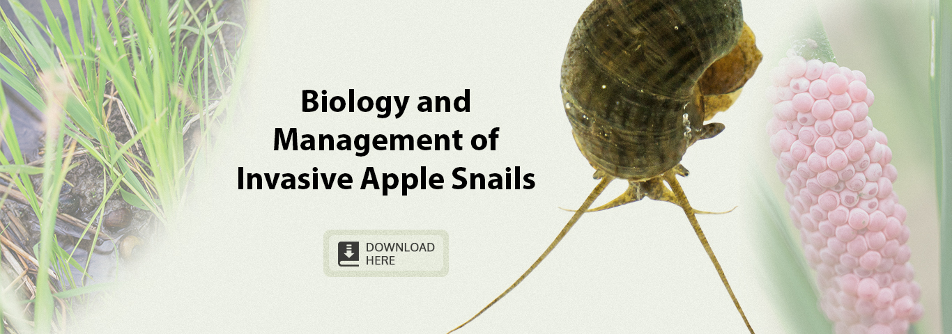 Biology and management of invasive apple snails-banner