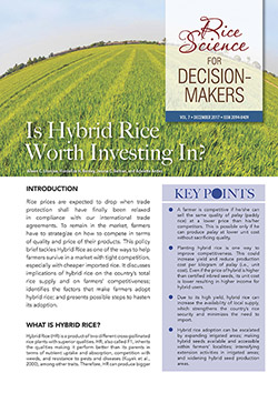 RS4DM-Is-Hybrid-Rice-Worth-Investing-In-cover