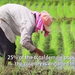 the female face of farming