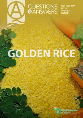 golden rice Q and A