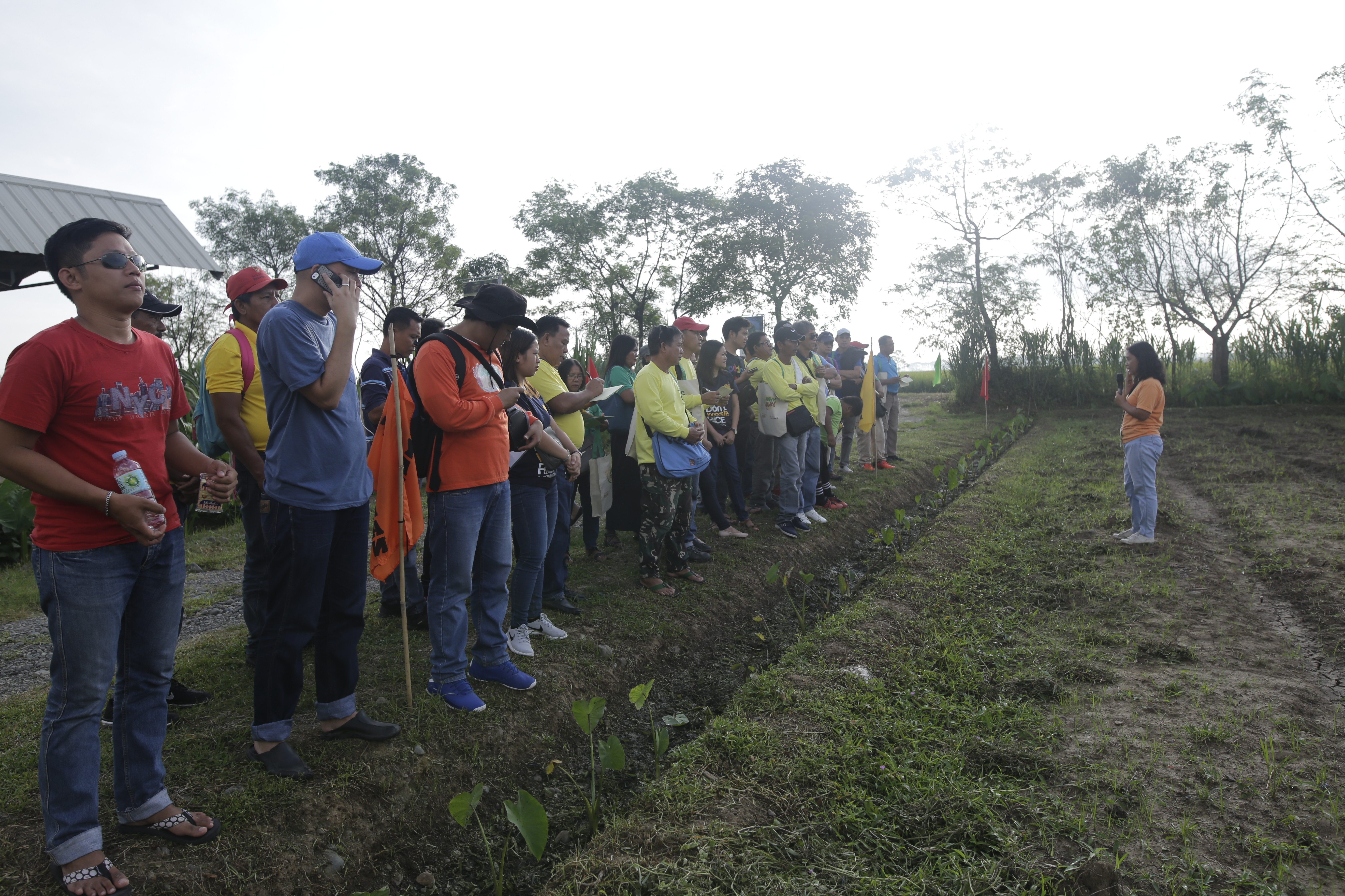 PhilRice's Lakbay Palay showcases wet season technologies