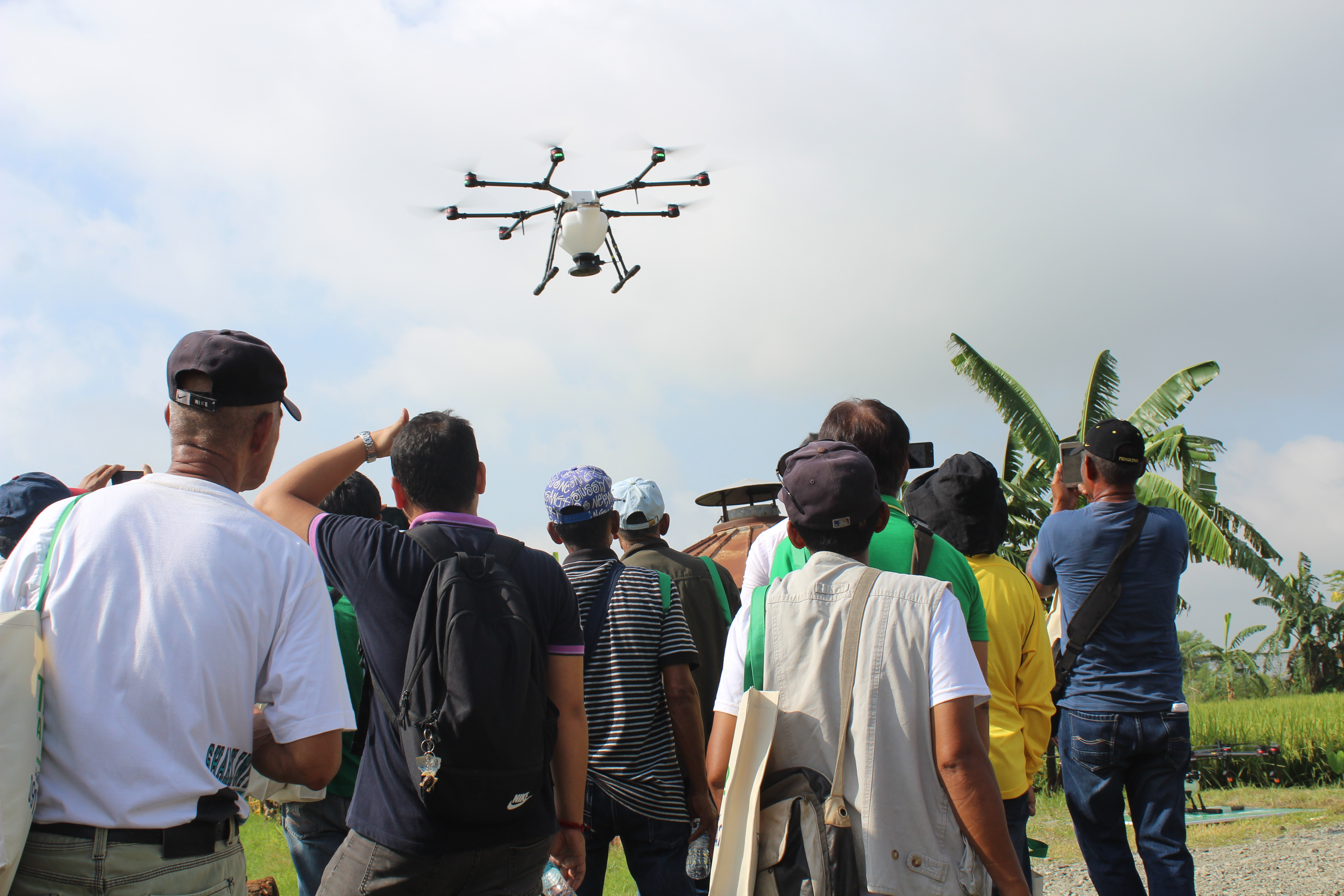 Will you pay to spray from the sky? - Philippine Rice Research