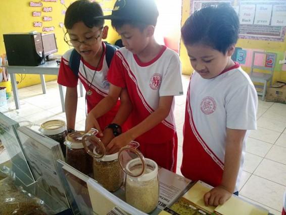 Widening rice S&T reach