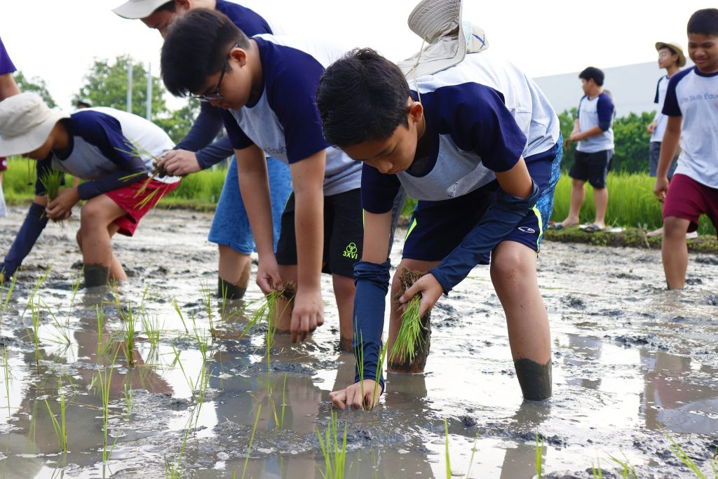 Rice Across - Philippine Rice Research Institute